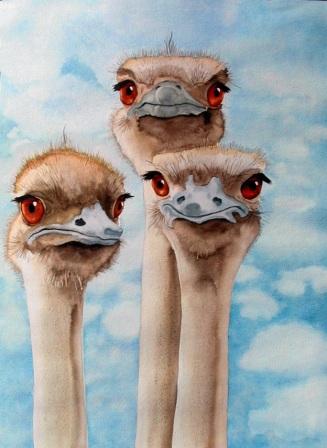 Ruth ostrich