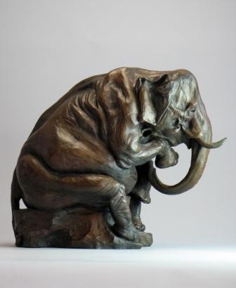 Steve elephant