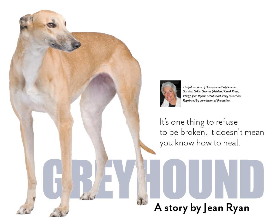 copy41_Greyhound hed